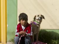 WORLDVETS CUSCO - PERU014