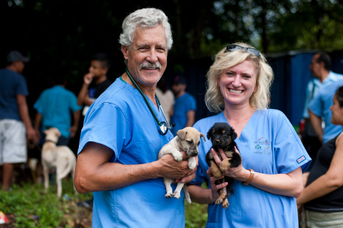 Custom|Corporate Veterinary Trips with World Vets